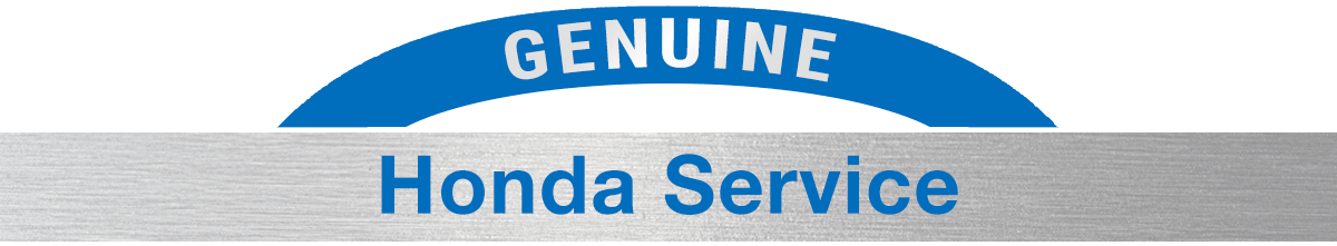Genuine Honda Spring Clean Up Service