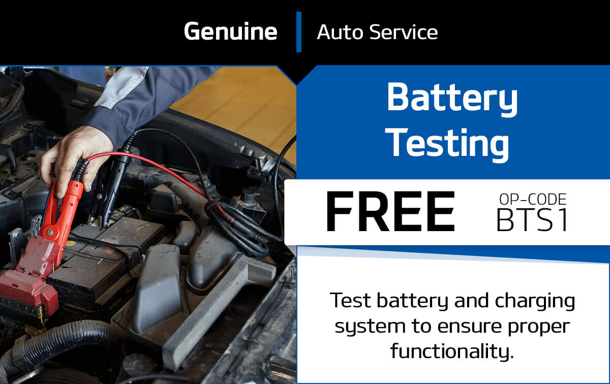 Battery Testing Service Special Coupon