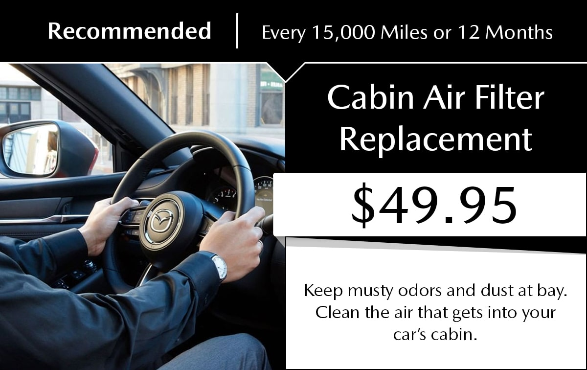 Cabin Filter Replacement Service Special