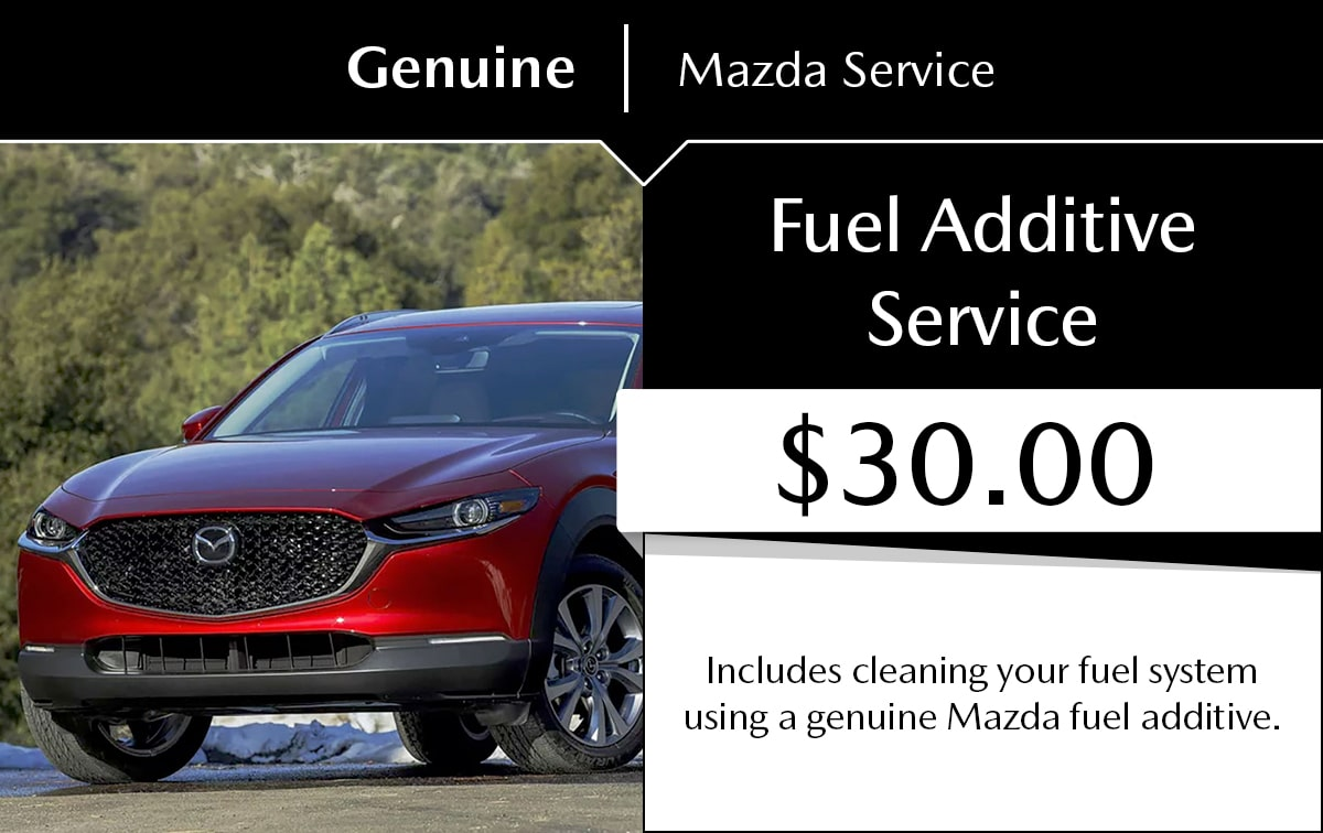 Fuel Additive Service Special