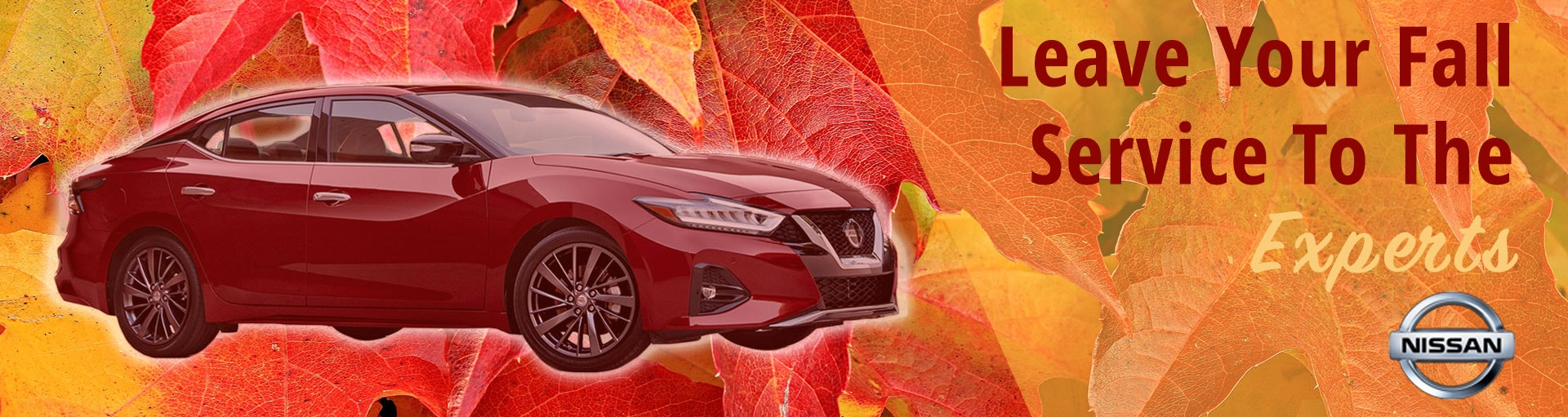Carson Nissan Service & Parts Special Coupons