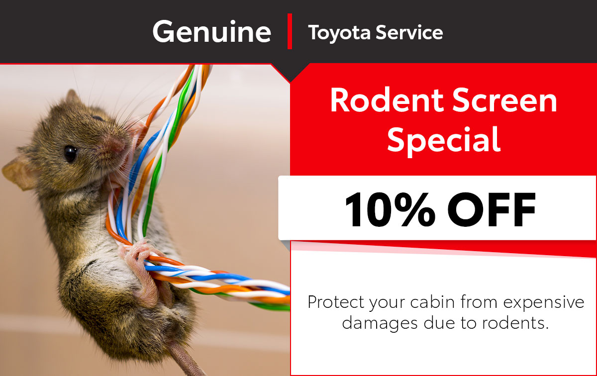 Toyota Rodent Screen Service Special Coupon