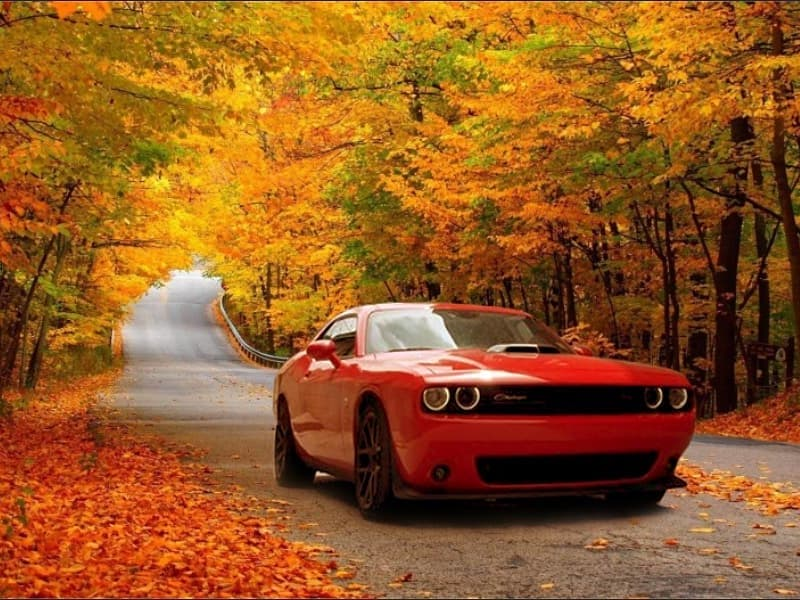 MOPAR Fall Preparation Service