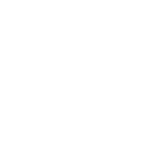 New Tire Sales Icon