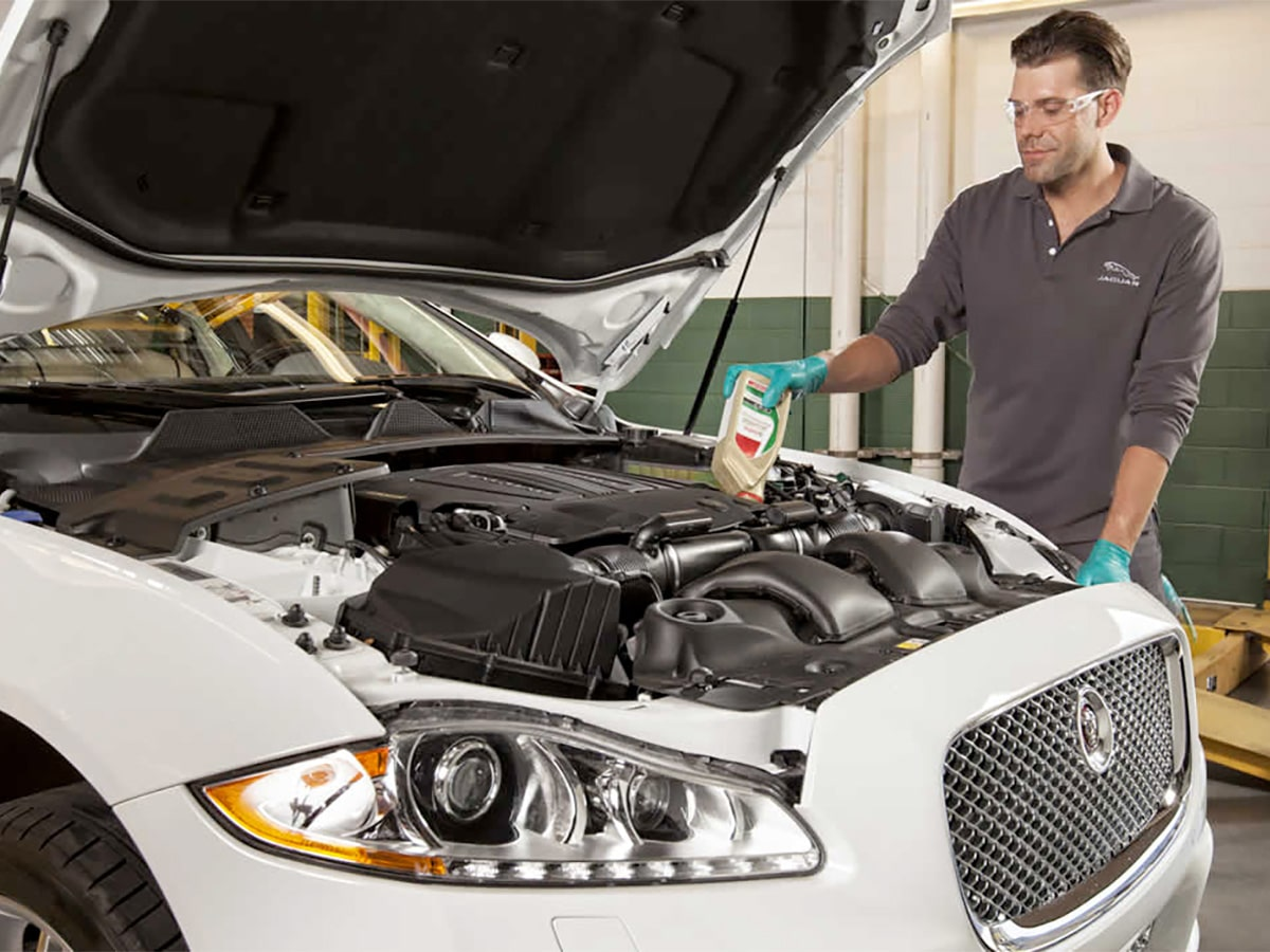 Jaguar Service Department